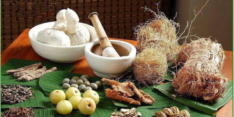 Manfaat Obat Herbal Untuk Kesehatan Tubuh