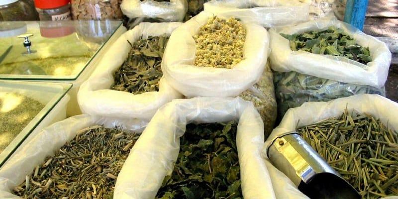 Obat Herbal untuk Mengobati Tumor