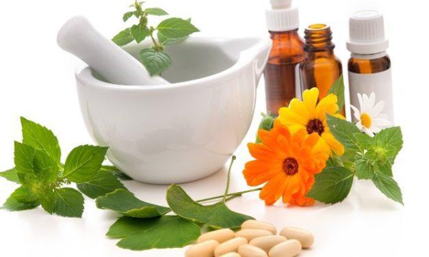 WHO dan Obat Herbal