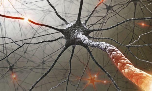 Mengenal Jenis Multiple Sklerosis dan Cara Menanganinya!