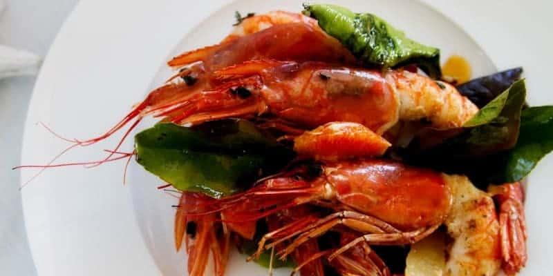 Alergi Seafood