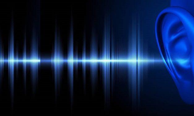 Cara Kerja Telinga Sebagai Indra Pendengaran