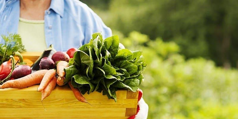 Diet Sehat Cara Memilih Makanan Bernutrisi
