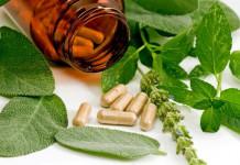 Obat Kanker Ginjal Tradisional