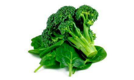 Inilah 6 Makanan Penambah Kekebalan Tubuh!