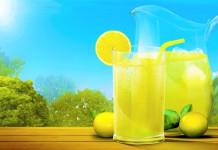 Pengolahan, Penggunaan dan Efek Samping Tanaman Lemon