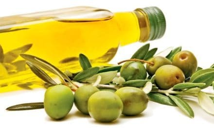 Manfaat Minyak Zaitun dalam Mencegah Berbagai Penyakit