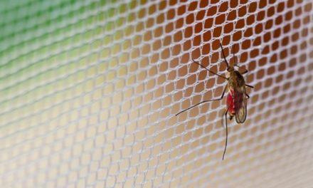Pedoman untuk Pencegahan Malaria
