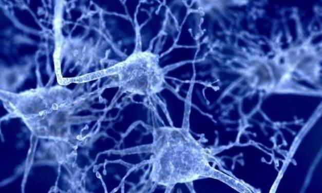 Apa Sebenarnya Penyebab Parkinson?