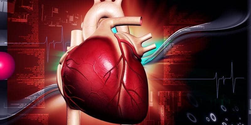 Apa Obat Herbal Jantung Bengkak Terbaik?