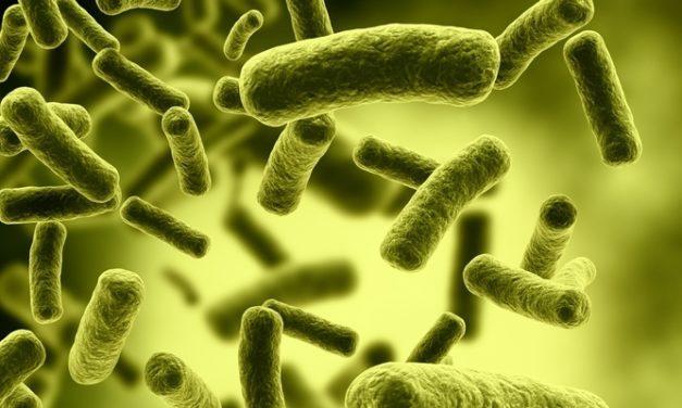 Mengenal Lebih dalam Penyakit Kolera