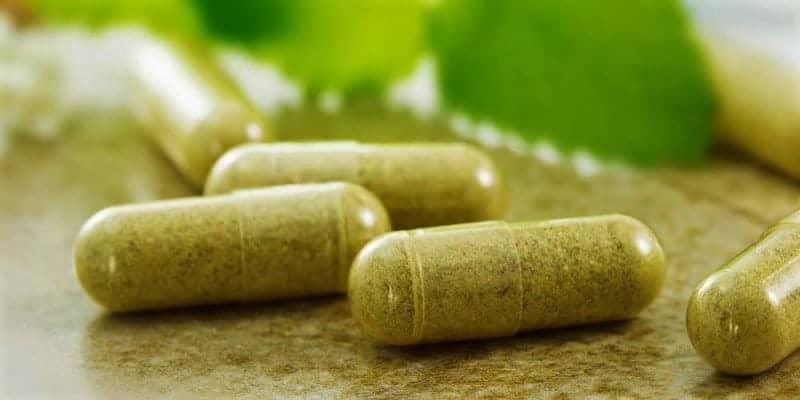 Sarang Semut: alternatif pengobatan tradisional leukemia