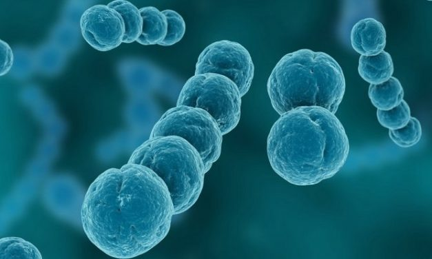Apa Penyebab Meningitis?