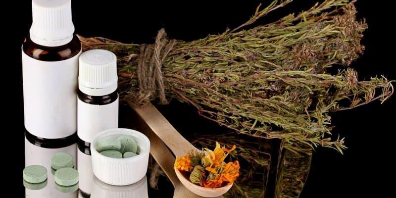 Apa Obat Herbal Penyakit Kuning Terbaik?