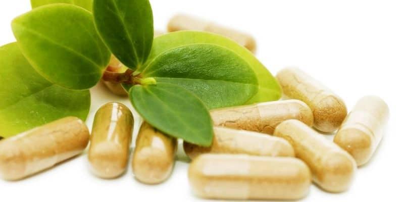 Apa Obat Herbal Kanker Payudara Terbaik?