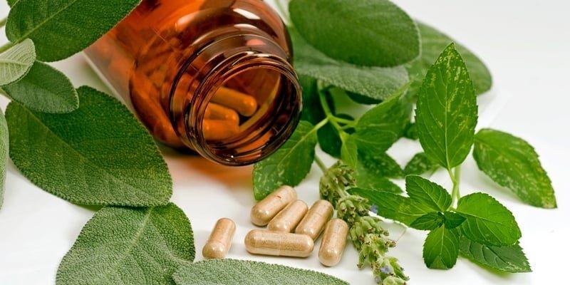 Apa Obat Herbal Aneurisme Aorta Terbaik?