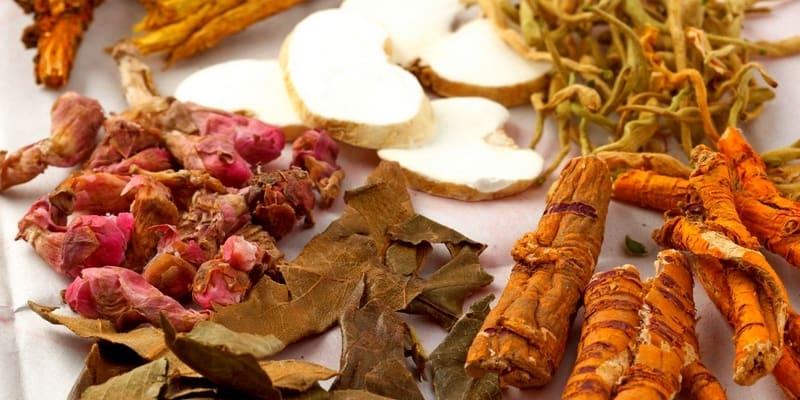 Apa Obat Herbal Tumor Kolon Terbaik?