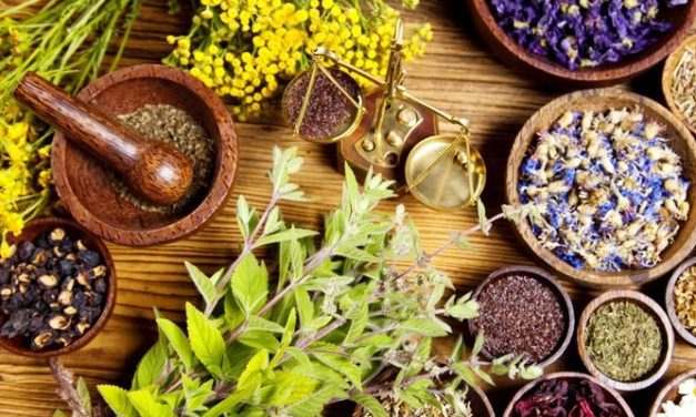 Apa Obat Herbal Kista Ginjal Terbaik?