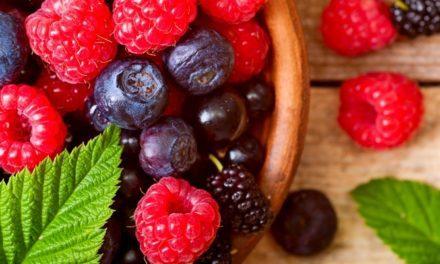 Apa Obat Herbal Septikemia Terbaik?