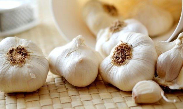 Manfaat Bawang Putih untuk Pengobatan Dan Kesehatan