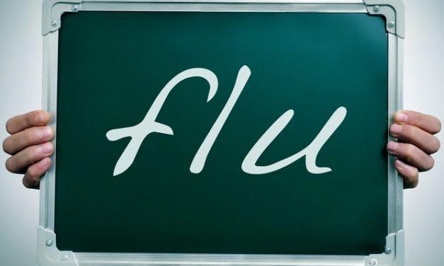 Penyebab, Pencegahan, dan Pengobatan Flu