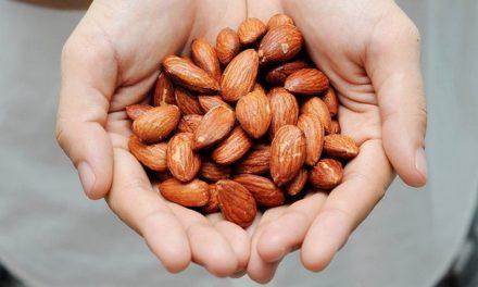 Ternyata Manfaat Almond Penting buat Kita Semua!