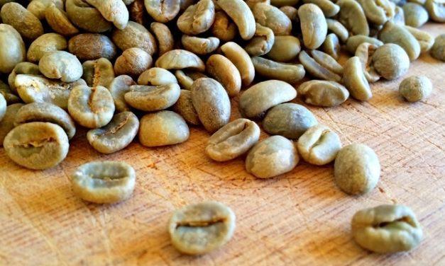 Green Coffee: Si Kopi Hijau yang Bikin Lemak Luntur