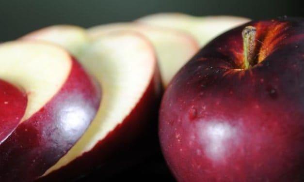 7 Makanan Untuk Kenyang Lebih Lama Agar Diet Sukses