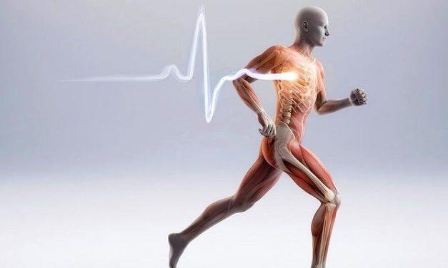 3 Cara Mengatasi Pengeroposan Tulang Akibat Osteopenia