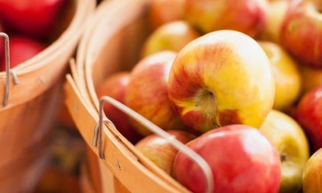 10 Makanan Terbaik untuk Mengecilkan Perut Buncit
