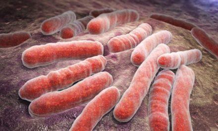 Penyakit TBC—Penyebab, Gejala, dan Pengobatannya