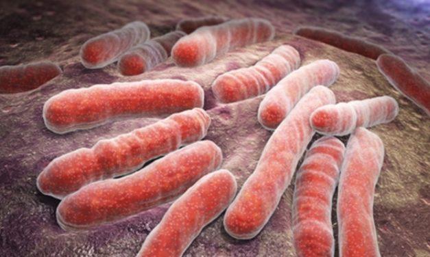 Penyakit TBC: Penyebab, Gejala, dan Pengobatannya