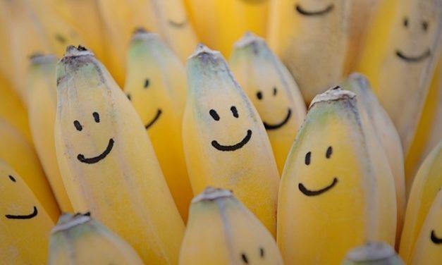 10 Manfaat Pisang yang Telah Didukung oleh Fakta Ilmiah