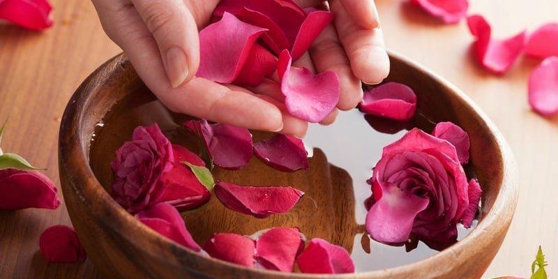 10 Manfaat Air Mawar bagi Kulit, Rambut, dan Kesehatan
