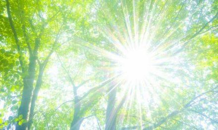 Bagaimana Sinar Matahari dan Sinar Ultraviolet Menyebabkan Kanker Kulit?