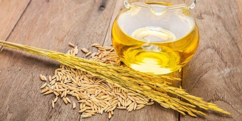 10 Manfaat Minyak Biji Gandum: Untuk Jantung, Gula Darah, Kolesterol, dsb
