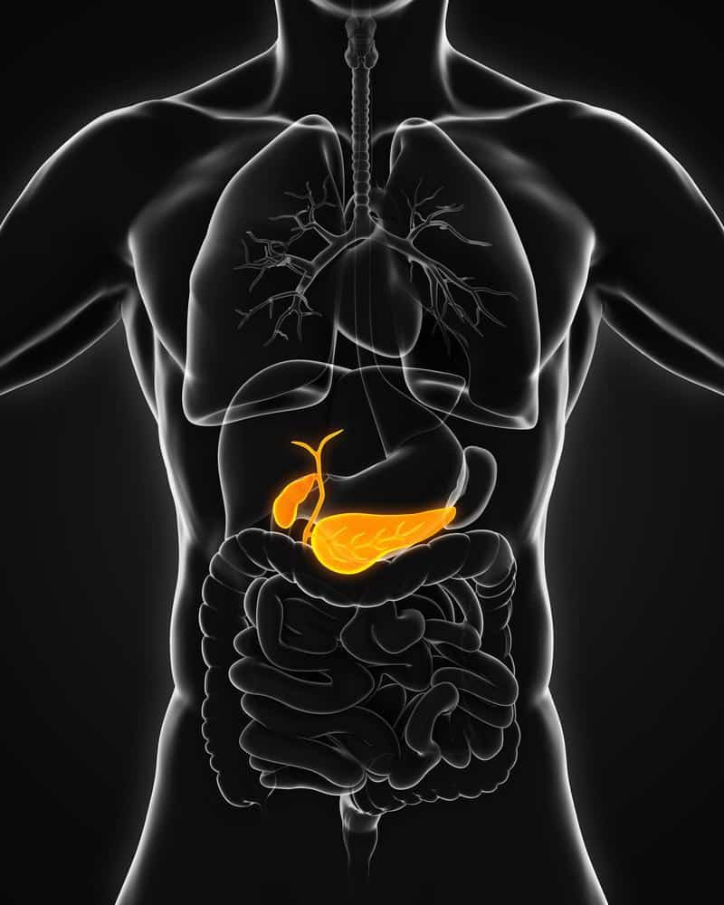 Pencegahan Kanker Pankreas