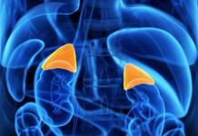 Kanker Adrenal - Kanker Suprarenalis
