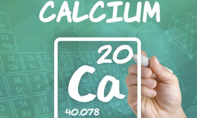 9 Makanan Sumber Kalsium Selain Susu