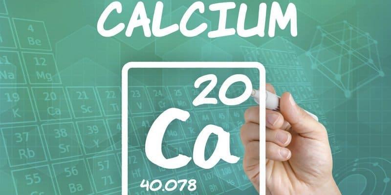 makanan sumber kalsium