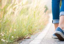 pencegahan aterosklerosis