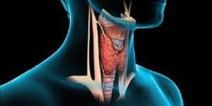 Pemeriksaan Kanker Tiroid