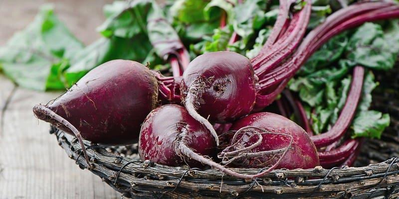 khasiat buah bit - cara mengolah buah bit - efek samping buah bit
