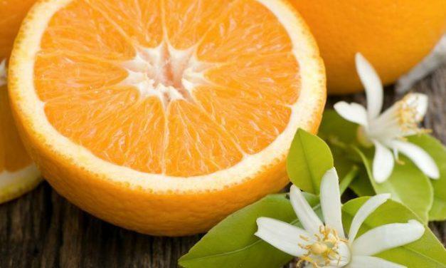 Manfaat Jeruk untuk Cegah Penyakit, Turunkan Darah Tinggi & Kolesterol