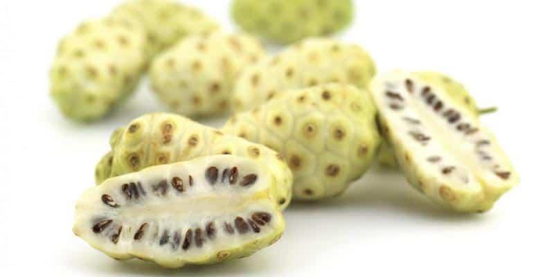 noni juice - khasiat buah bit - cara mengolah buah bit - efek samping buah bit