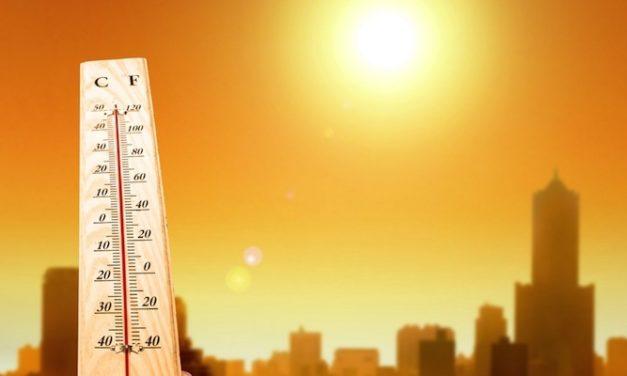 Penyebab dan Tanda-Tanda Dehidrasi yang Perlu Segera Dikenali