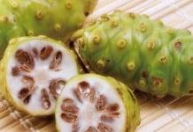 Noni Juice sebagai Herbal untuk Penyakit Ginjal