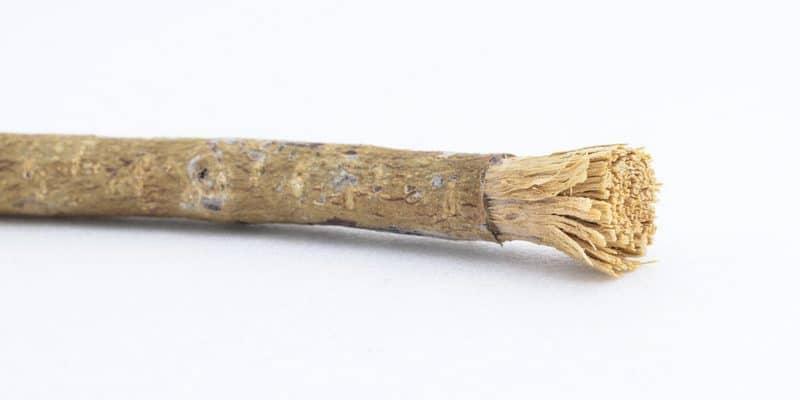 manfaat siwak - kayu siwak - sikat gigi