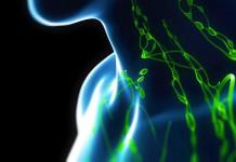 Kanker Getah Bening: penangkal, pantangan, penghamba, preventif, atau pencegahan kanker getah bening