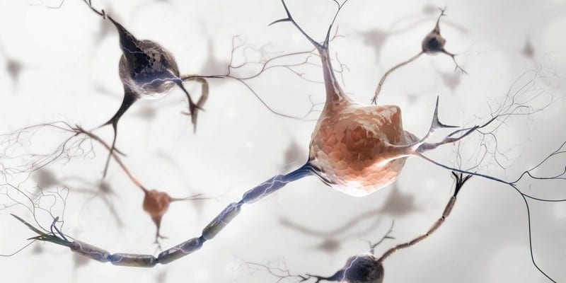 nyeri otot - nyeri sendi - penyebab fibromyalgia
